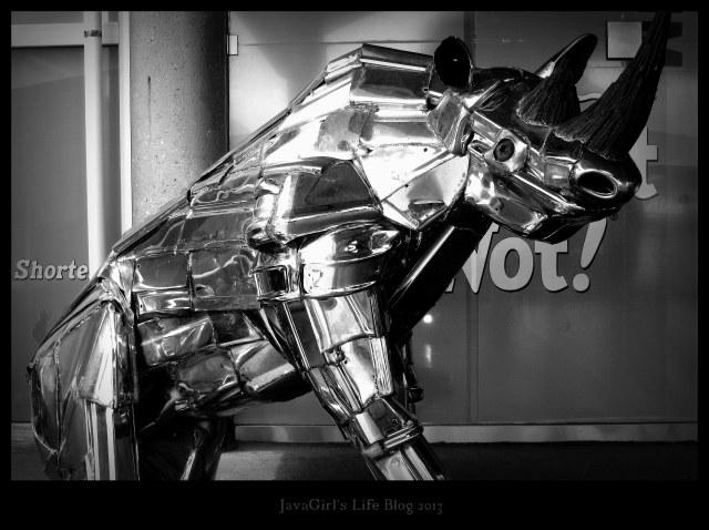 MetalRhinoPhotoChallenge2013